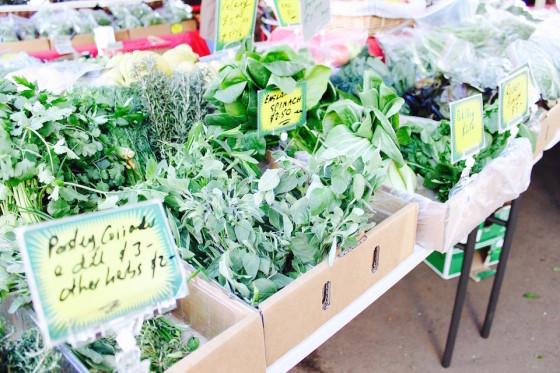 Sydney's Best Farmers Markets