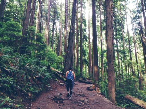 Hike - Quarry Rock Trail